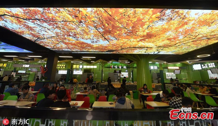 Beautiful natural scenes are projected onto large screens hung on the roof of a dining hall at Zhejiang Agriculture & Forestry University in Hangzhou City, East China's Zhejiang Province, March 17, 2019. (Photo/IC)