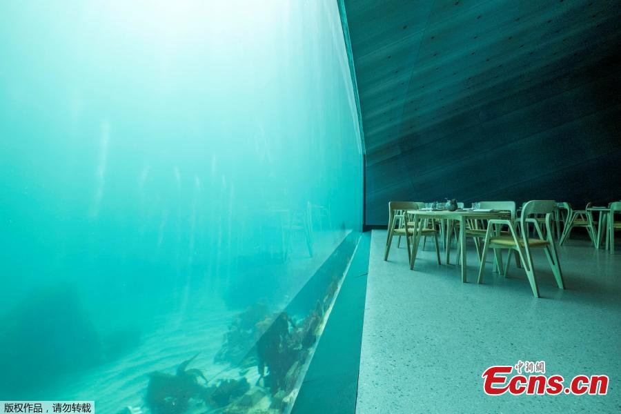 Photo shows the interior view of the restaurant named Under, that is semi-submerged beneath the waters of the North Atlantic in Lindesnes near Kristiansand in Oslo, Norway, March 19, 2019. (Photo/Agencies)