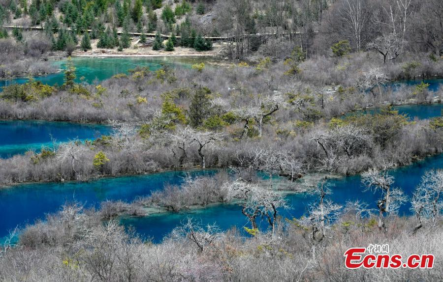 Snow and ice begin to melt as spring arrives in the Jiuzhaigou Valley Scenic Area in Sichuan Province, a UNESCO world heritage site, March 25, 2019. Jiuzhaigou, which literally means \