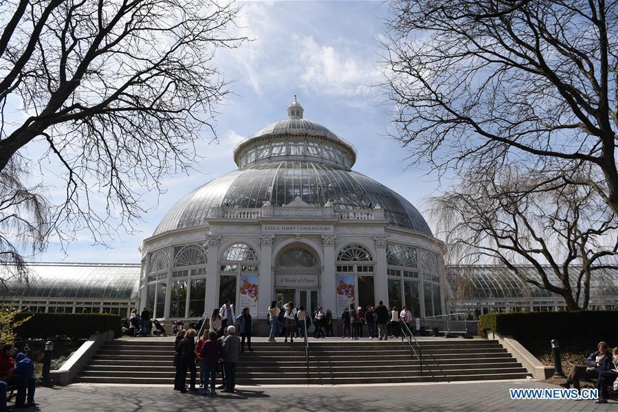 Photo taken on March 24, 2019 shows the Enid A. Haupt Conservatory where the Orchid Show is held at New York Botanical Garden (NYBG) in New York, the United States. The Orchid Show themed Singapore showcases treasures from NYBG\'s exquisite orchid collection as well as Singapore\'s achievements in orchid cultivation, research and conservation. (Xinhua/Han Fang)