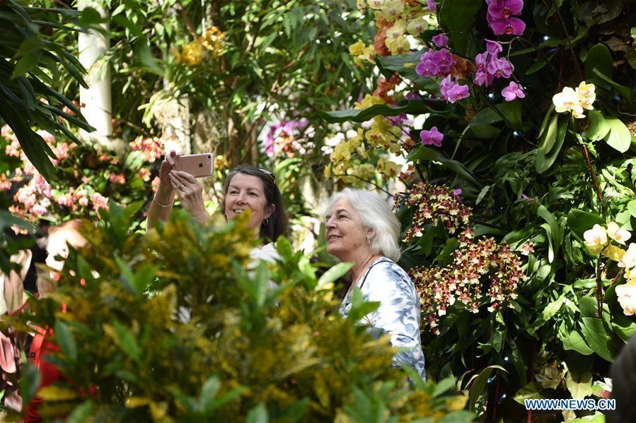 Visitors take selfies during the Orchid Show at New York Botanical Garden (NYBG) in New York, the United States, March 24, 2019. The Orchid Show themed Singapore showcases treasures from NYBG\'s exquisite orchid collection as well as Singapore\'s achievements in orchid cultivation, research and conservation. (Xinhua/Han Fang)