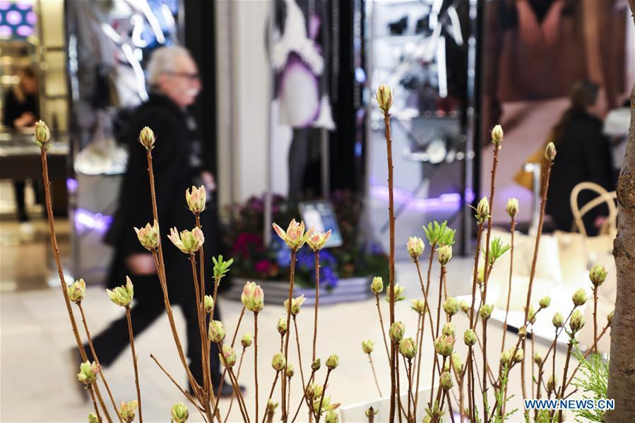 A man visits Macy\'s Flower Show at Macy\'s Herald Square flagship store in New York, the United States, on March 25, 2019. The annual flower show is held from March 24 to April 7 this year. With the theme of \