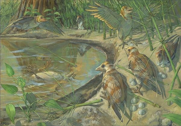 Artistic reconstruction of the dinosaur-era birds and their living environment. (Provided by the Institute of Vertebrate Paleontology and Paleoanthropology of the Chinese Academy of Sciences)