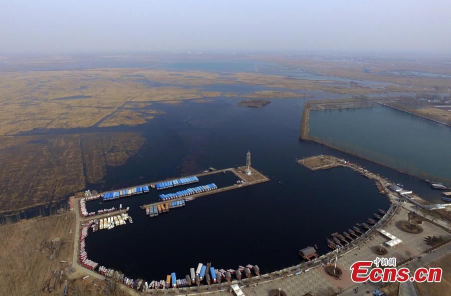 An aerial view of Baiyangdian Lake in Anxin County, Xiongan New Area, Hebei Province, March 27, 2019. In April 2017, China announced the establishment of the Xiongan New Area, spanning three counties in Hebei Province about 100 km southwest of Beijing. Many of Beijing\'s non-capital functions, as well as some of its population, will be relocated to Xiongan. (Photo: China News Service/Han Bing)