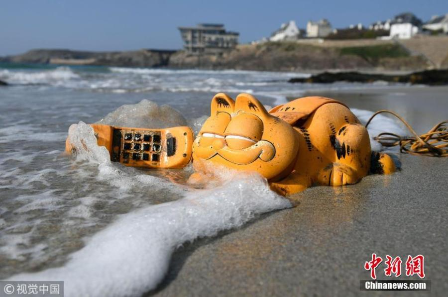 A plastic \'Garfield\' phone is displayed on the beach in Le Conquet, western France. Since the 1980s, the Iroise coast in French coastal community Brittany has received a supply of bright orange landline novelty phones shaped like the famous cartoon cat. Now the source of the problem has been found - a lost shipping container. (Photo/VCG)