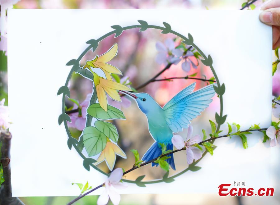 Ni Wenbing has painted birds, plants and flowers on A4 paper with artistic cuts in the middle to bring the beauty of the outdoors into an image through silhouettes. (Photo: China News Service/Zhai Lu and Li Jun)