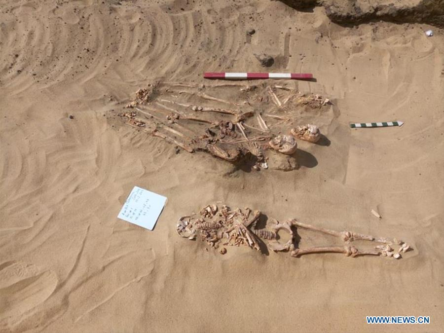 The undated photo provided by Egyptian Ministry of Antiquities on April 1, 2019 shows mummies uncovered in Quesna city of Menoufia province, Egypt. An Egyptian archaeological mission uncovered a limestone-made coffin in Quesna city of Menouifia province, the country\'s Ministry of Antiquities said in a statement on Monday. \