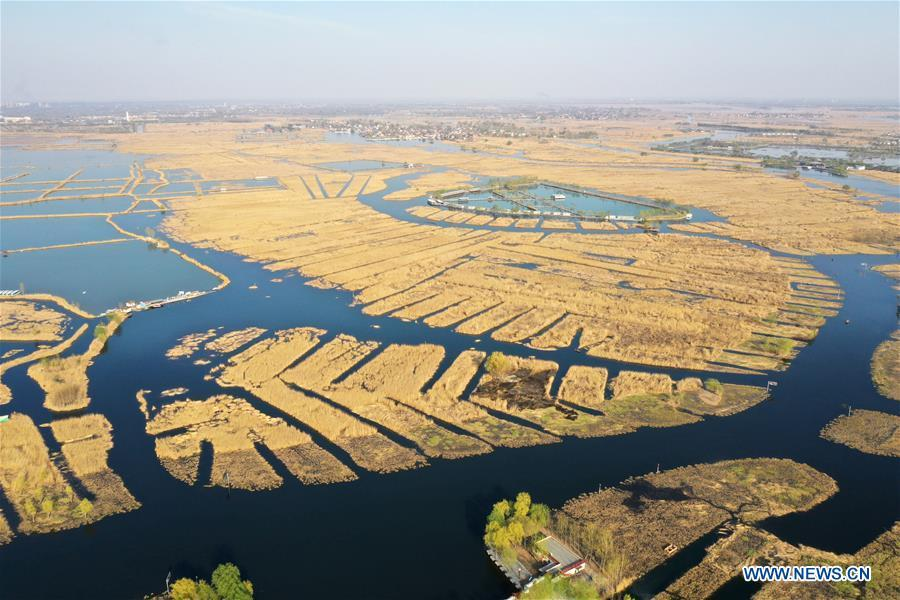 Aerial photo taken on March 31, 2019 shows the Baiyangdian Lake in Xiongan New Area, north China\'s Hebei Province. On April 1, 2017, China announced plans to establish the Xiongan New Area, about 100 km southwest of Beijing. Known as China\'s \