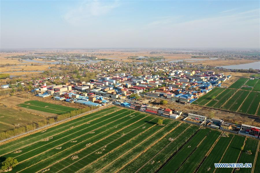 Aerial photo taken on March 31, 2019 shows a village amid the Baiyangdian Lake in Xiongan New Area, north China\'s Hebei Province. On April 1, 2017, China announced plans to establish the Xiongan New Area, about 100 km southwest of Beijing. Known as China\'s \