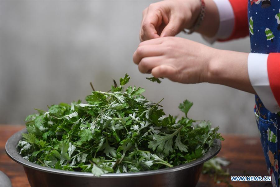 A villager picks wormwood leaves to make Qingtuan, or green sticky rice balls, in Yiyanshan Village of Huzhou, east China\'s Zhejiang Province, April 4, 2019. Qingtuan, made from glutinous rice mixed with wormwood juice and stuffed with bamboo shoot, tofu and preserved meat, is a traditional snack popular mailnly among people living in the south of Yangtze River during the Qingming Festival also known as Tomb Sweeping Day. (Xinhua/Huang Zongzhi)