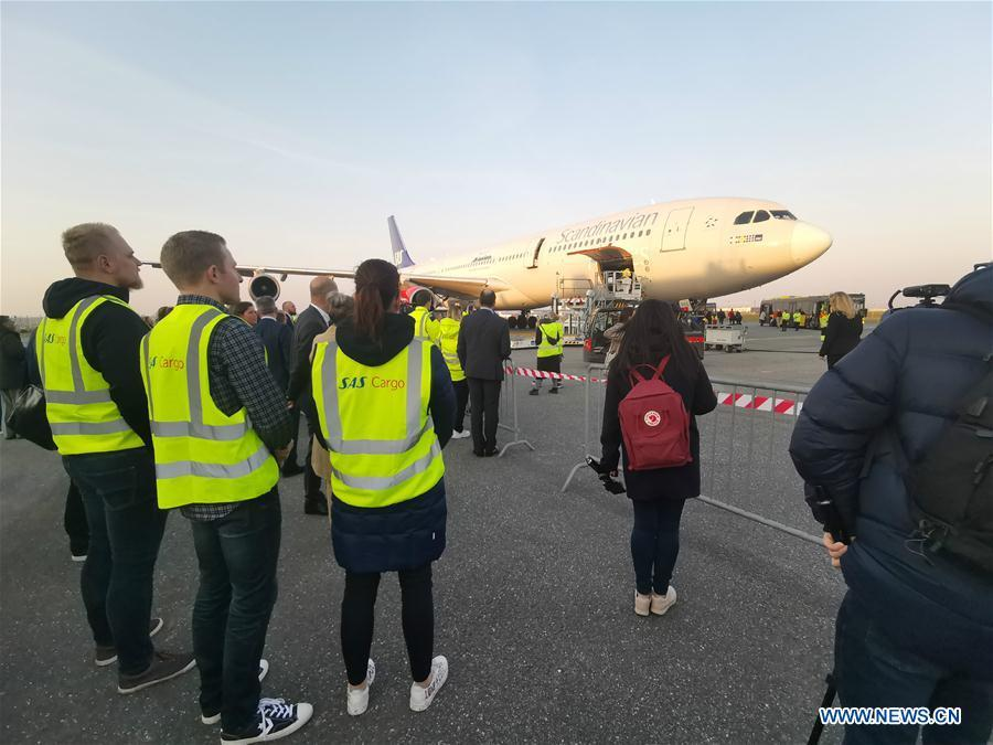Staff members wait to receive Xing Er and Mao Er, two giant pandas from China, at Kastrup airport in Copenhagen, Denmark, on April 4, 2019. After arriving in Copenhagen on Thursday, the pair of giant pandas Xing Er, a 5-year-old male, and Mao Er, a 4-year-old female, will head to their new home in Copenhagen Zoo for collaborative research. They will live in Denmark for 15 years, according to the agreement signed between the Chinese Association of Zoological Gardens and the zoo in 2017. (Xinhua/Li Pengfei)