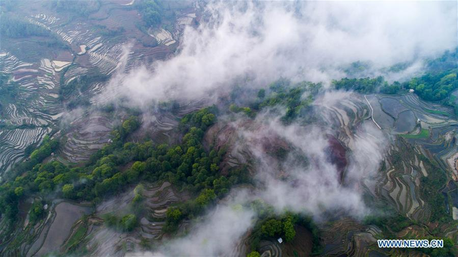 Aerial photo taken on April 3, 2019 shows Hani terraced fields in Yuanyang County, southwest China\'s Yunnan Province. (Xinhua/Hu Chao)