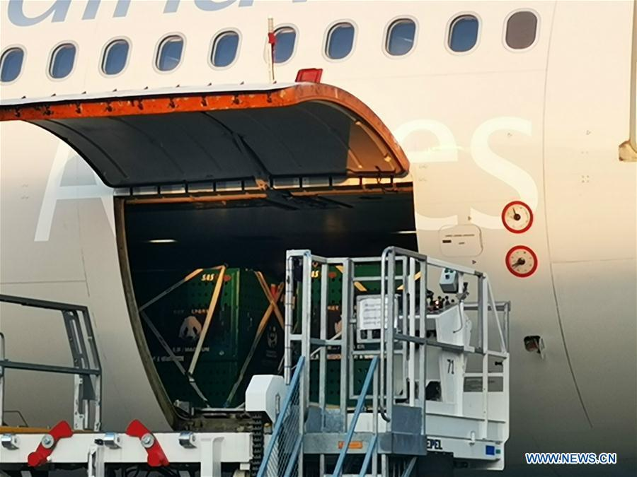 Xing Er and Mao Er, two giant pandas from China, are unloaded from a cargo plane at Kastrup airport in Copenhagen, Denmark, on April 4, 2019. After arriving in Copenhagen on Thursday, the pair of giant pandas Xing Er, a 5-year-old male, and Mao Er, a 4-year-old female, will head to their new home in Copenhagen Zoo for collaborative research. They will live in Denmark for 15 years, according to the agreement signed between the Chinese Association of Zoological Gardens and the zoo in 2017. (Xinhua/Li Pengfei)