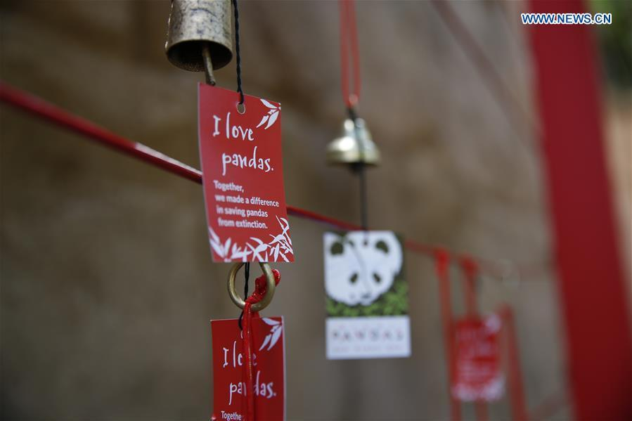 Wishing signs are seen on the Giant Panda Friendship Wall in San Diego Zoo in San Diego, the United States, April 6, 2019. The San Diego Zoo in the U.S. state of California held a special ceremony on Saturday to kick off a three-week farewell event for two giant pandas. Twenty-seven-year-old female giant panda Bai Yun and her son, six-year-old Xiao Liwu, will leave the zoo in late April and be sent back to China, as the zoo\'s conservation loan agreement with China has ended. (Xinhua/Li Ying)