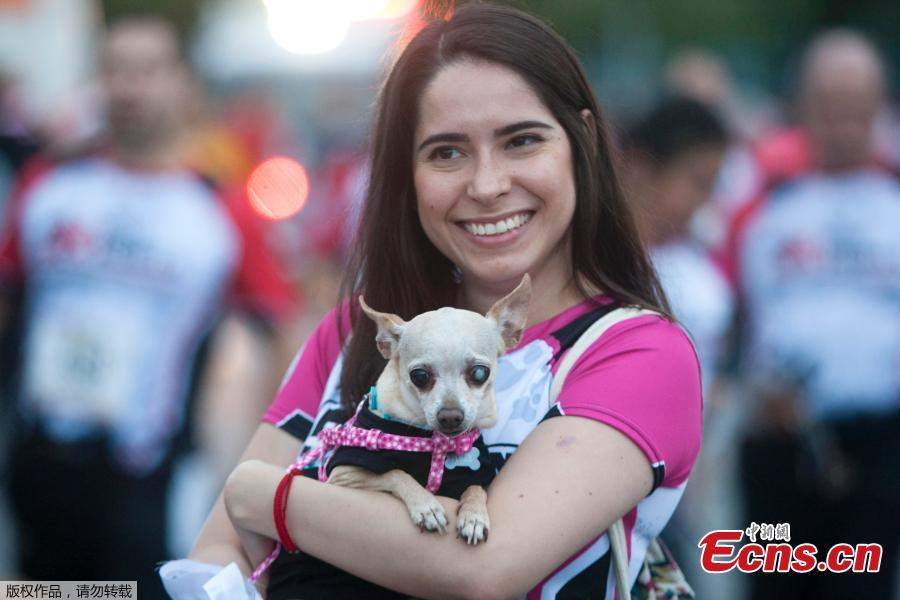 A woman holds her dog at the end of the Dog & Human Race Monterrey 2019, in order to foster coexistence with pets in Monterrey, Mexico, on April 7, 2019. (Photo/Agencies)