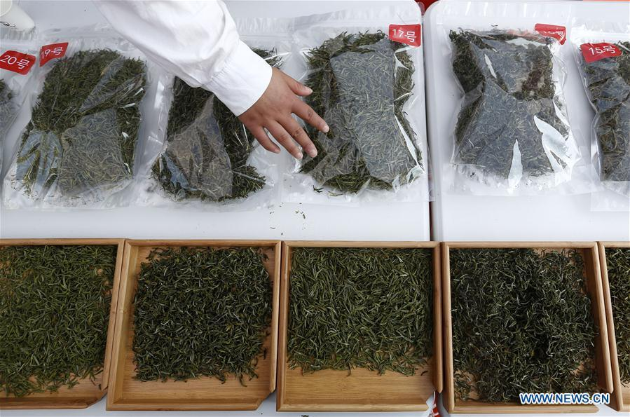 An expert reviews tea leaves during a tea competition in Huangshan, a famous tea producing area in east China\'s Anhui Province, April 7, 2019. Local tea farmers bring a total of 60 varieties of tea leaves to take part in the competition here on Sunday. (Xinhua/Shi Yalei)