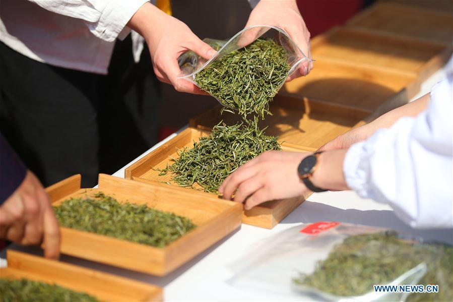 Staff members prepare tea leaves for a tea competition in Huangshan, a famous tea producing area in east China\'s Anhui Province, April 7, 2019. Local tea farmers bring a total of 60 varieties of tea leaves to take part in the competition here on Sunday. (Xinhua/Shi Yalei)