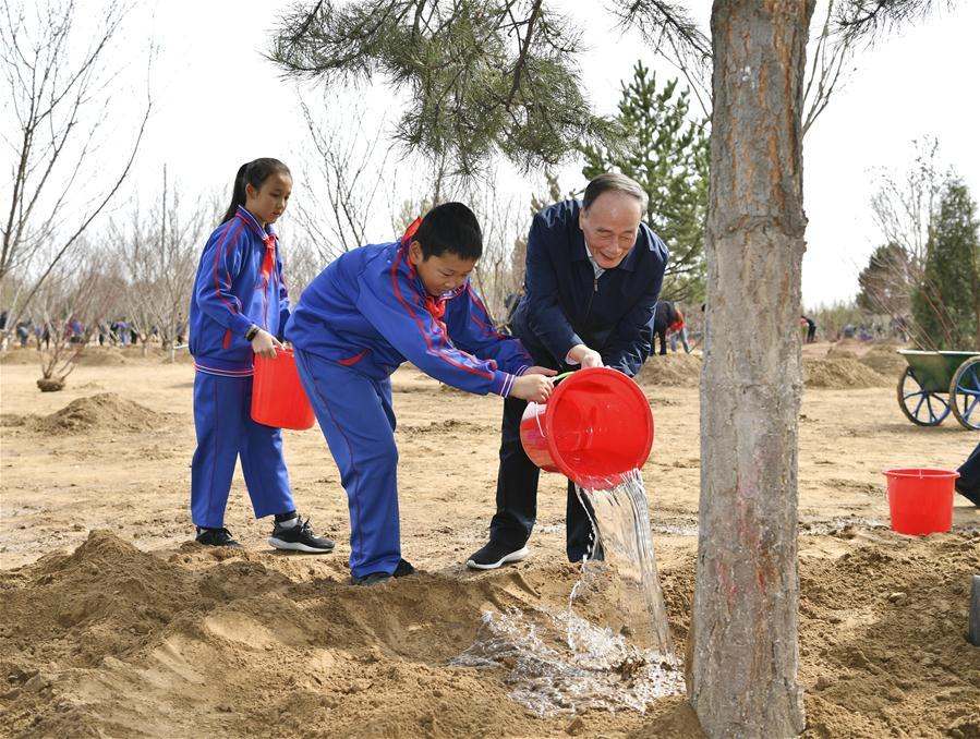 Wang Qishan waters a tree with school children in Tongzhou District in Beijing, capital of China, April 8, 2019. Chinese President Xi Jinping, also general secretary of the Communist Party of China Central Committee and chairman of the Central Military Commission, attended the tree-planting activity on Monday. Other Party and state leaders, including Li Zhanshu, Wang Yang, Wang Huning, Zhao Leji, Han Zheng and Wang Qishan, also attended the activity. (Xinhua/Yin Bogu)
