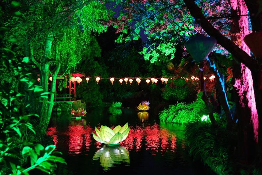 More than 130 Chinese-style lanterns and lotus-shaped lanterns were lit up at Osmanthus Gardens in Cornwall Park during the 10th Chinese Lantern Festival in Hastings, New Zealand, on April 5, 2019. (Photo/Chinaculture.org)