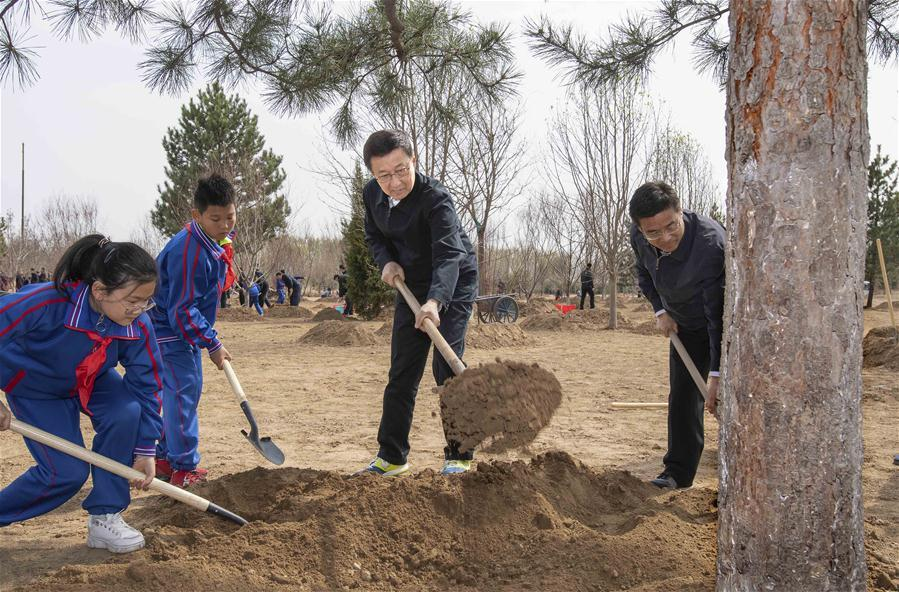 Han Zheng plants a tree in Tongzhou District in Beijing, capital of China, April 8, 2019. Chinese President Xi Jinping, also general secretary of the Communist Party of China Central Committee and chairman of the Central Military Commission, attended the tree-planting activity on Monday. Other Party and state leaders, including Li Zhanshu, Wang Yang, Wang Huning, Zhao Leji, Han Zheng and Wang Qishan, also attended the activity. (Xinhua/Li Tao)