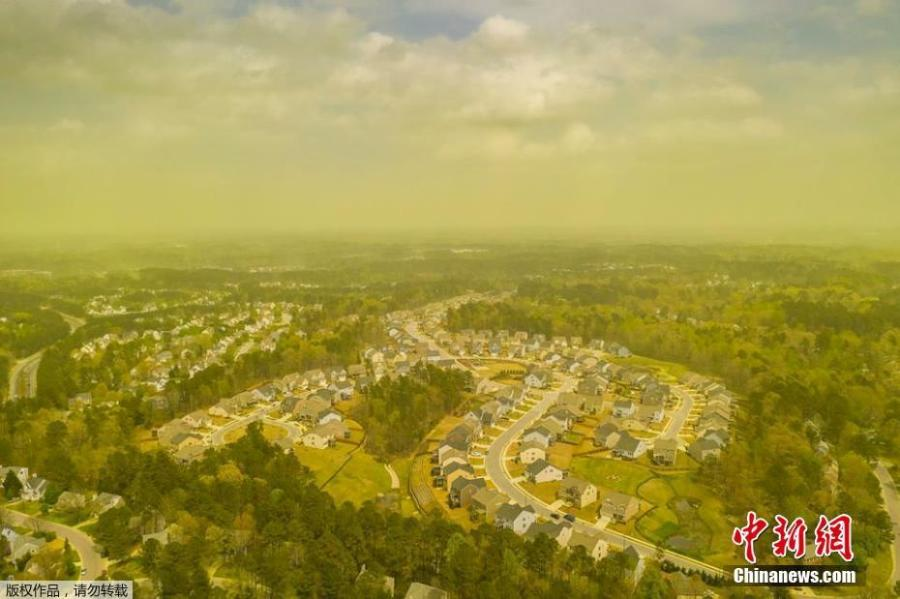 Stunning photo shows a thick haze of yellow pine pollen hanging over Raleigh, North Carolina, April 8, 2019. (Photo/Agencies)