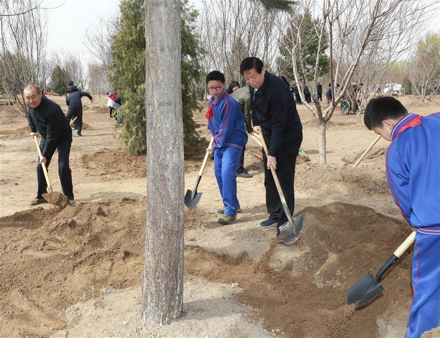 Li Zhanshu plants a tree in Tongzhou District in Beijing, capital of China, April 8, 2019. Chinese President Xi Jinping, also general secretary of the Communist Party of China Central Committee and chairman of the Central Military Commission, attended the tree-planting activity on Monday. Other Party and state leaders, including Li Zhanshu, Wang Yang, Wang Huning, Zhao Leji, Han Zheng and Wang Qishan, also attended the activity. (Xinhua/Pang Xinglei)