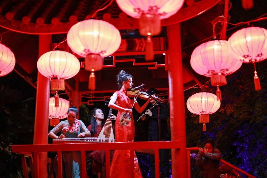 A New Zealand student plays violin while Chinese musicians play the guzheng, pipa and flute during the 10th Chinese Lantern Festival in Hastings, New Zealand, on April 5, 2019. (Photo/Chinaculture.org)