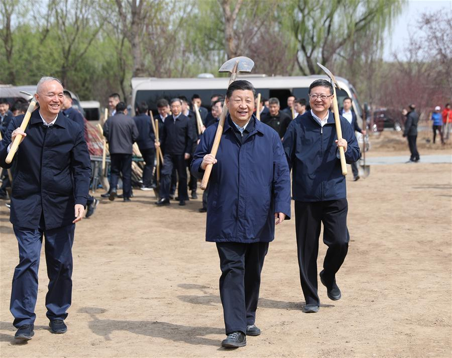 Chinese President Xi Jinping, also general secretary of the Communist Party of China Central Committee and chairman of the Central Military Commission, attends a tree-planting activity in Tongzhou District in Beijing, capital of China, April 8, 2019. Other Party and state leaders, including Li Zhanshu, Wang Yang, Wang Huning, Zhao Leji, Han Zheng and Wang Qishan, also attended the activity. (Xinhua/Ju Peng)