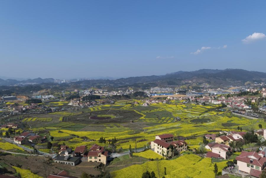 A panoramic view of the Eight Diagram-patterned plantation, which is covered with blooming rapeseed flowers, in Pipa village of Renhuai city, Southwest China\'s Guizhou Province. (Photo provided to chinadaily.com.cn)