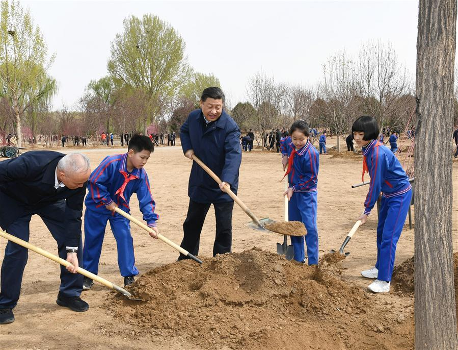 Chinese President Xi Jinping, also general secretary of the Communist Party of China Central Committee and chairman of the Central Military Commission, attends a tree-planting activity in Tongzhou District in Beijing, capital of China, April 8, 2019. Other Party and state leaders, including Li Zhanshu, Wang Yang, Wang Huning, Zhao Leji, Han Zheng and Wang Qishan, also attended the activity. (Xinhua/Xie Huanchi)