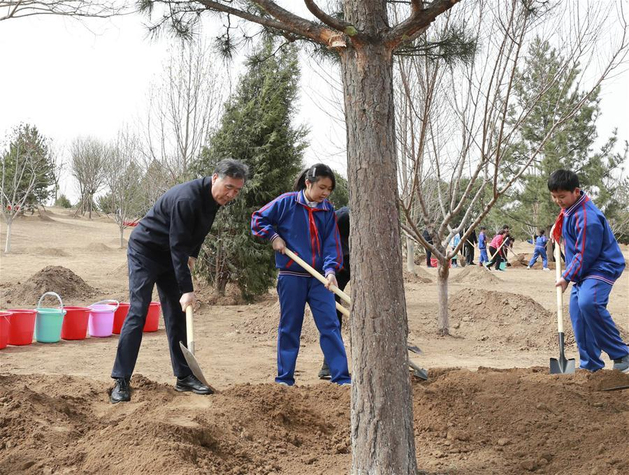 Wang Yang plants a tree in Tongzhou District in Beijing, capital of China, April 8, 2019. Chinese President Xi Jinping, also general secretary of the Communist Party of China Central Committee and chairman of the Central Military Commission, attended the tree-planting activity on Monday. Other Party and state leaders, including Li Zhanshu, Wang Yang, Wang Huning, Zhao Leji, Han Zheng and Wang Qishan, also attended the activity. (Xinhua/Pang Xinglei)