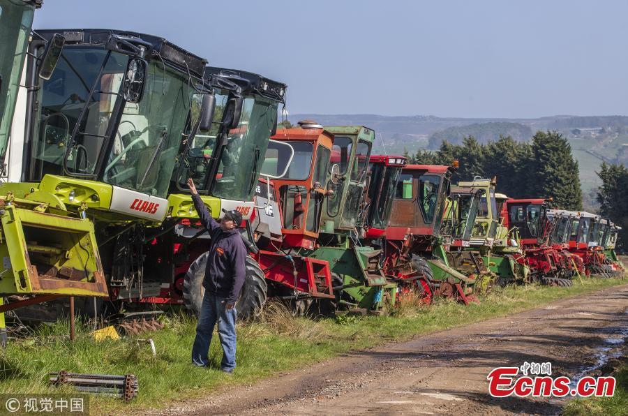 Richard Manners, parts specialist looks over some of the combines. 350 dead combines sit in a field, are broken for parts and exported around the world in a container, where they are welded back together on arrival. April 6 2019.  (Photo/VCG)