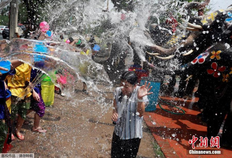A woman reacts while reporting as people and elephants play with water in the background as part of celebrations for the water festival of Songkran, which marks the start of the Thai New Year, in Ayutthaya, Thailand April 11, 2019.  (Photo/Agencies)