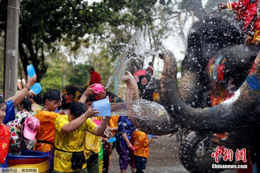 Elephants and people play with water as part of celebrations for the water festival of Songkran, which marks the start of the Thai New Year in Ayutthaya, Thailand April 11, 2019. (Photo/Agencies)
