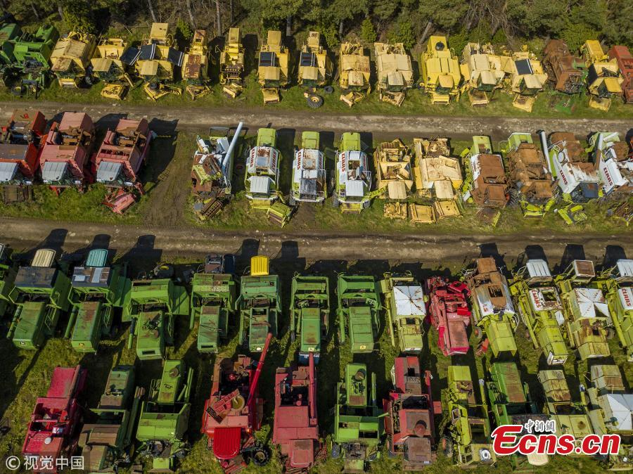 350 dead combines sit in a field, are broken for parts and exported around the world in a container, where they are welded back together on arrival. April 6 2019. (Photo/VCG)