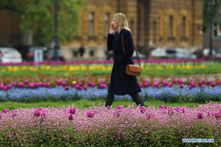 Photo taken on April 10, 2019 shows a woman walking among flowers in downtown Zagreb, capital of Croatia. (Xinhua/Zheng Huansong)