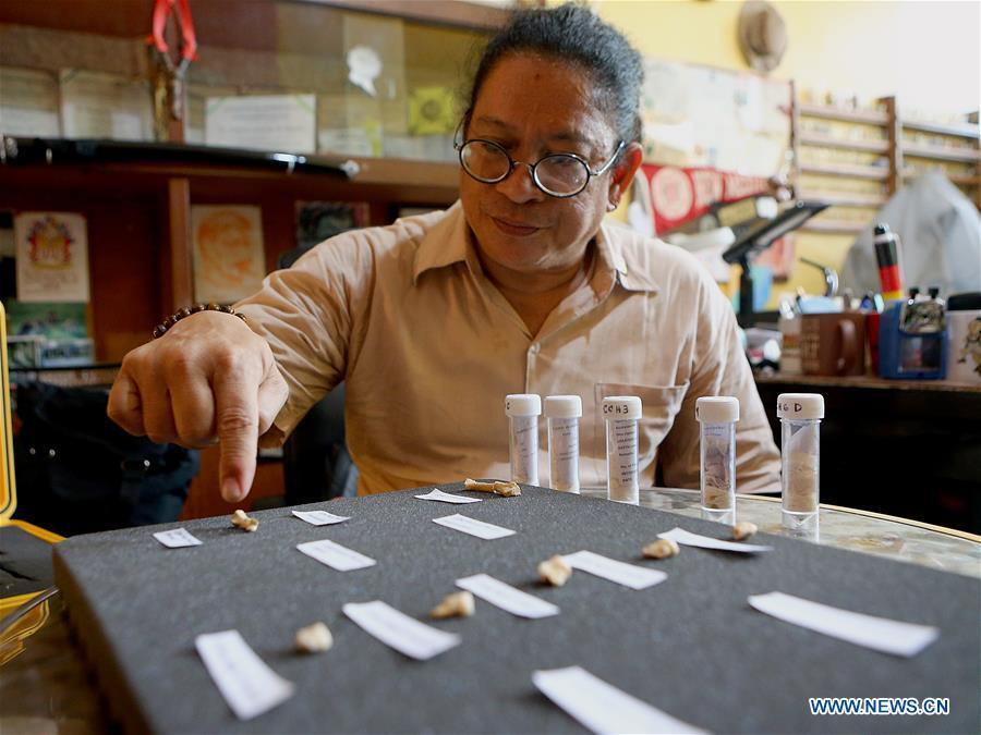 Filipino archeologist Armand Mijares shows the set of fossils of a newly discovered human species called Homo luzonensis at the University of the Philippines in Quezon City, the Philippines, April 11, 2019. Found in Callao Cave on Luzon Island, the 50,000-year-old remains belong to a now extinct species of human. (Xinhua/Rouelle Umali)