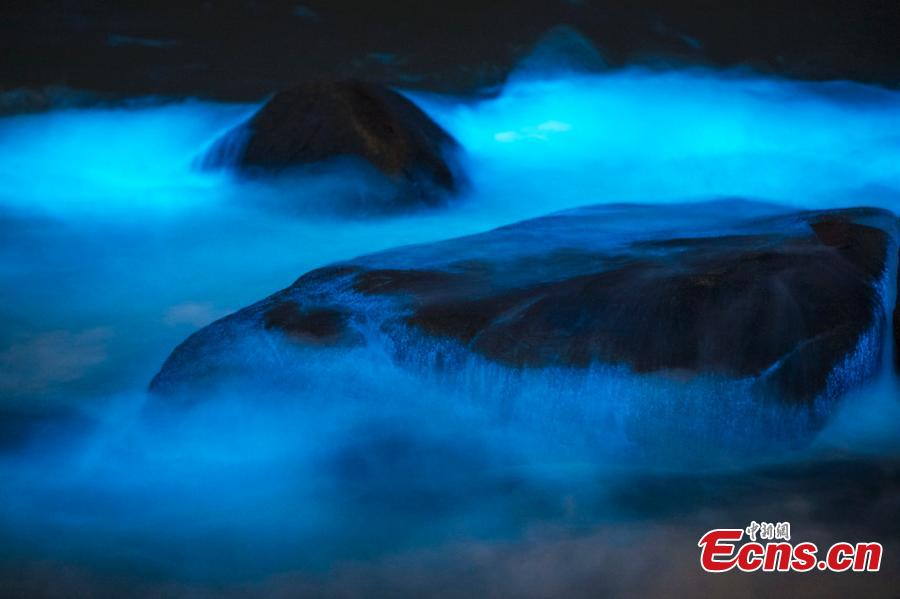Image taken on April 14, 2019 shows a striking blue algae bloom near Changle Airport in Fuzhou City, Fujian Province. The fluorescent blue glow is natural, powered by a bloom of Noctiluca scintillans, commonly known as \