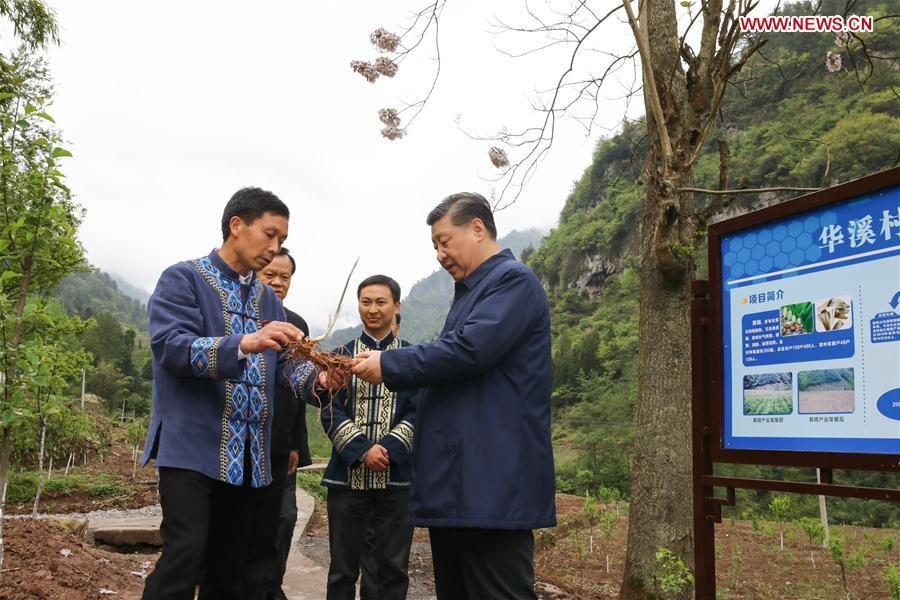 Chinese President Xi Jinping, also general secretary of the Communist Party of China Central Committee and chairman of the Central Military Commission, talks with a villager to learn about the progress of poverty alleviation and in solving prominent problems including meeting the basic need of food and clothing and guaranteeing compulsory education, basic medical care and safe housing, in Huaxi Village of Shizhu Tujia Autonomous County, southwest China\'s Chongqing, April 15, 2019. Xi went on an inspection tour in southwest China\'s Chongqing Municipality Monday. (Xinhua/Ju Peng)