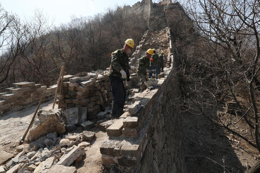 Workers lay bricks to restore part of the wall. (PHOTO/CHINA DAILY)  Water and greens  Cheng Yongmao, 63, is the chief engineer for the Jiankou restoration. According to him, a principle of \