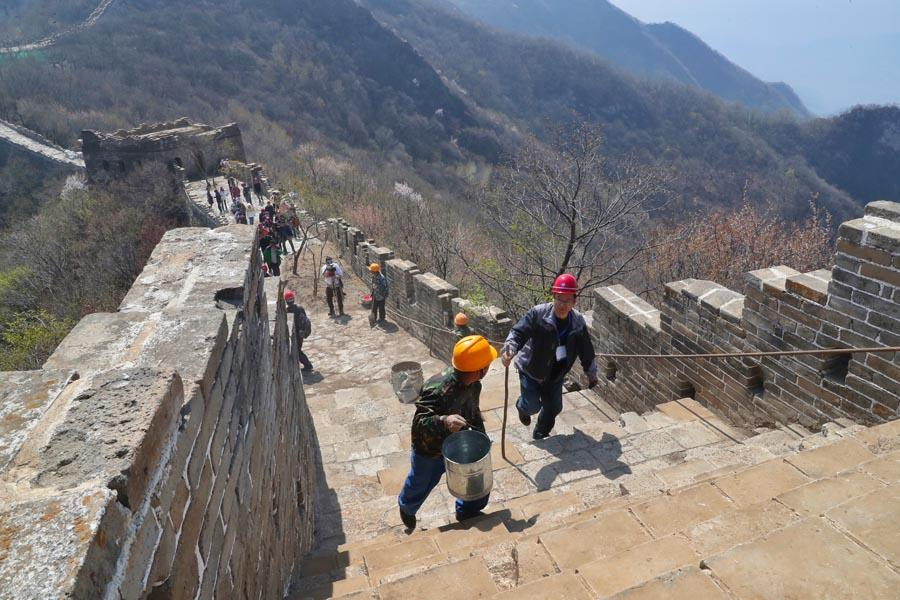 Members of a restoration team climb up the Jiankou section of the Great Wall.  (PHOTO/CHINA DAILY)  Li, a leading bricklayer in the project and a local villager in Huairou, has worked on the restoration of the wall for the past 15 years.  \