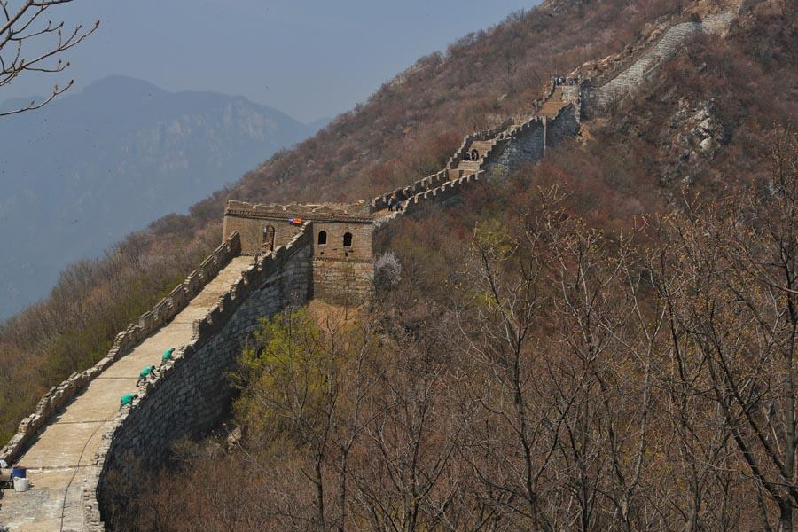 Jiankou, one of the toughest sections of the Great Wall to climb in Beijing, is going through its second phase of restoration.  (PHOTO/CHINA DAILY)  The second phase of restoration work on the toughest section of the Great Wall is soon to be completed, Wang Kaihao reports.  There is little doubt that Jiankou is the toughest Beijing section of the Great Wall to climb. From the base of the hills in Huairou district, there is hardly a proper road that leads up to the wall except for a rocky path through cliffs. And in many places, the wall has collapsed, so walking along the top may lead to crawling as well.  Nevertheless, Li Jingdong and his colleagues from a restoration team have to try walking over this section of the Great Wall twice a day.  \