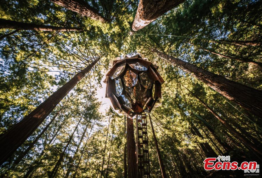 Photo shows the treehouse featuring clear floor panels, and a grand cathedral ceiling that showcases soaring 360 degree views of the surrounding redwood forest. (Photo/IC)  O2Treehouse, a company that built different treehouses, has listed the Pinecone Treehouse in Oakland, California, for sale. The 5.5-ton  geodesic cabin is constructed from steel, wood and glass. The sale price is around $150,000, but that doesn\'t include installation on your own property.