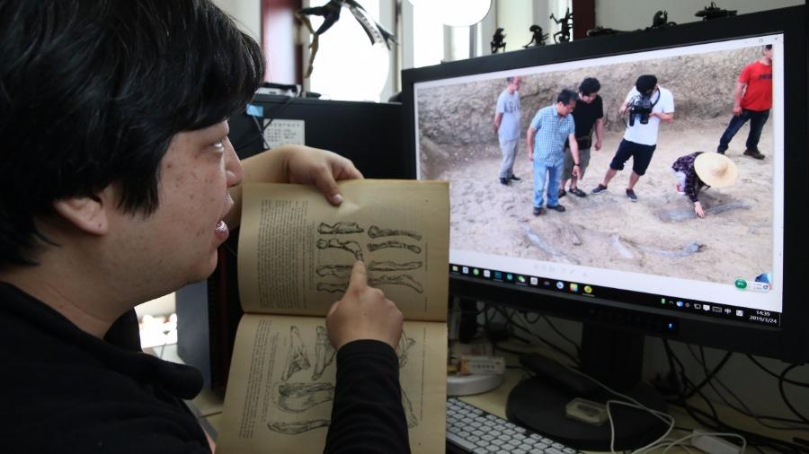 Zhao Chuang participated in the archaeological excavation of dinosaur fossils in Laiyang, Shandong Province in 2013. (Photo/China Daily)