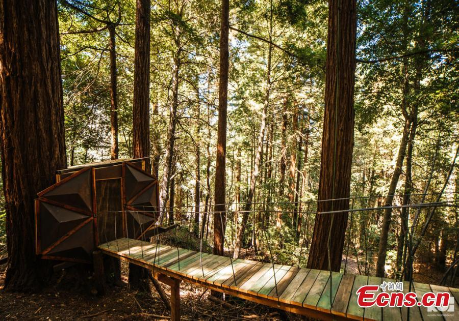 O2Treehouse, a company that built different treehouses, has listed the Pinecone Treehouse in Oakland, California, for sale. The 5.5-ton  geodesic cabin is constructed from steel, wood and glass. The sale price is around $150,000, but that doesn\'t include installation on your own property. (Photo/IC)