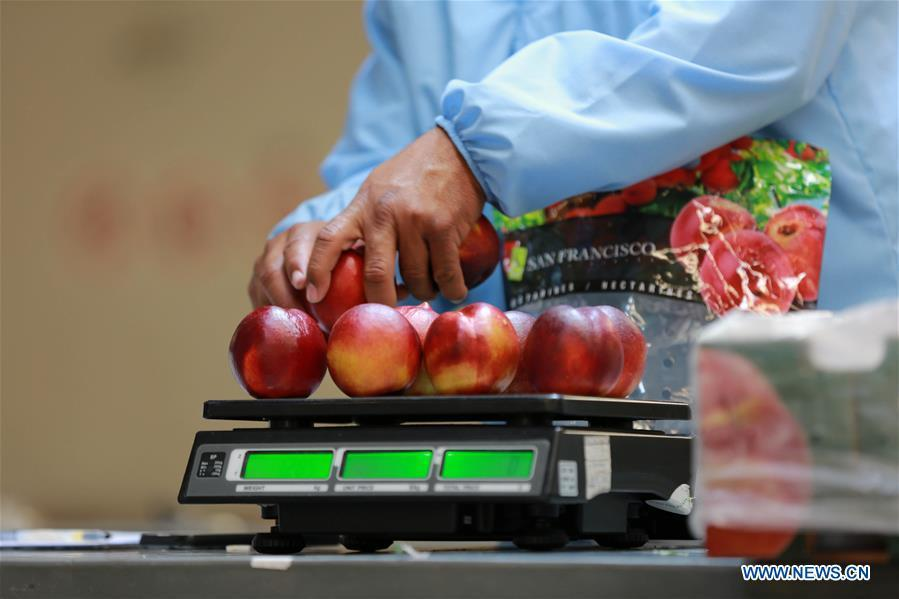 A worker weighs nectarines in a factory of Agricola Garces in Mostazal, Chile, on Jan. 19, 2018. Food of a particular place is an important symbol of local geographic and cultural characteristics. Food carries history and tradition, leads the tide of trade, strengthens diplomatic relations, disseminates and promotes culture. Food has been serving as connections between people around the world. In ancient times, food such as grapes, pomegranates, walnuts, coriander, cucumbers and sesame seeds were introduced to China along the Silk Road. Nowadays, thanks to the Belt and Road Initiative, red wine, coffee, dried fruits, meat, seafood, and dairy products from foreign countries enter the homes of ordinary people, turning daily meals into feasts with exotic cuisines. (Xinhua/Xu Rui)