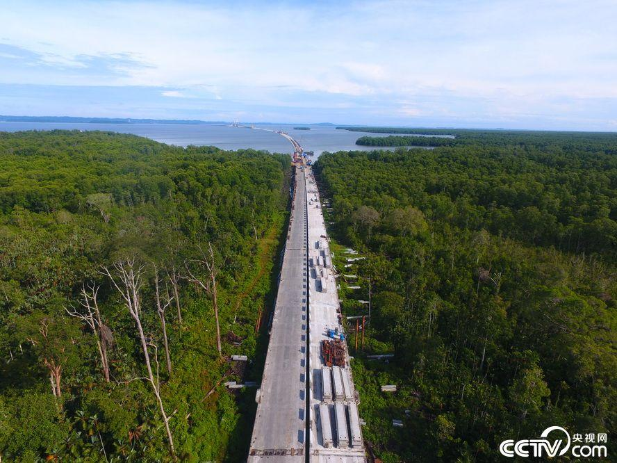 An aerial photo of the CC4 contract of the Temburong Bridge under construction. (Photo/cctv.com)