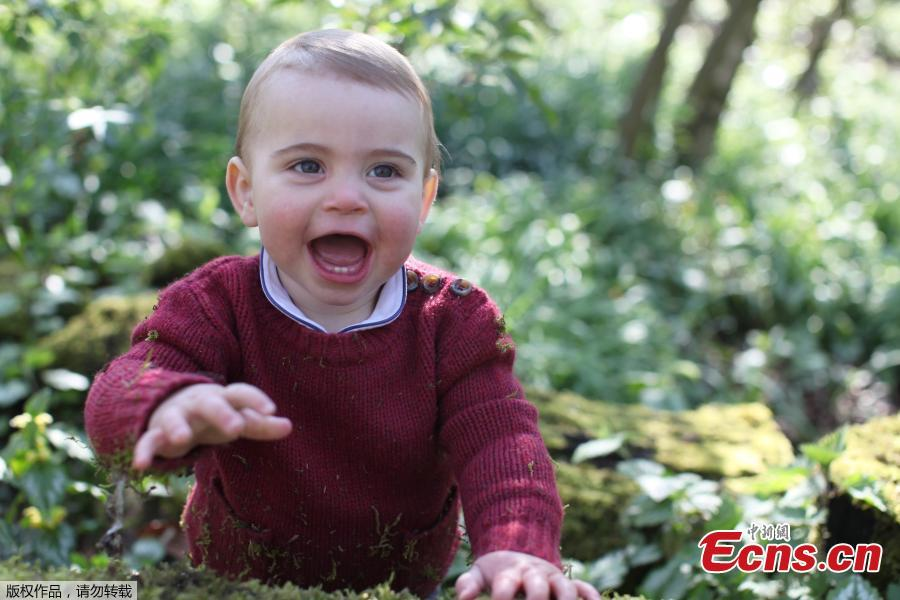 The photo released on April 22,2019 ,shows a rosy-cheeked and cheerful-looking Prince Louis having fun with the grass in the grounds of Anmer Hall, Norfolk, the family\'s country residence. (Photo/Agencies)