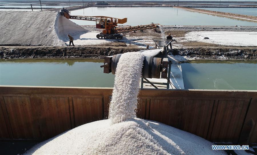 Aerial photo taken on April 22, 2019 shows workers loading crude salt at Daqinghe salt field in Tangshan City, north China\'s Hebei Province. Some 270,000 tons of salt is expected to be produced this spring at the Daqinghe salt field. (Xinhua/Yang Shiyao)