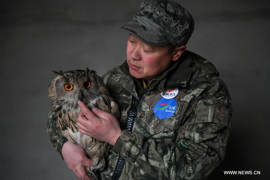 Shuanglong, a man of Mongolian ethnic group, takes an eagle owl for training before releasing it into the wild at the storeroom of his home in New Barag Right Banner of the Hulun Buir City, north China\'s Inner Mongolia Autonomous Region, April 13, 2019. Shuanglong, a volunteer born in the 1980s, has been dedicated to protecting wildlife inhabiting along the Hulun Lake over the past ten years. Over 40 endangered animals have been saved through his efforts. Shuanglong has organized various activities including photo exhibitions and lectures, as a way to raise awareness of wildlife protection among the public. Affected by Shuanglong, some volunteers also joined him to protect wildlife along the Hulun Lake. (Xinhua/Peng Yuan)